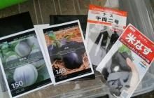 新圃場で夏野菜、作物ごとの支柱たてに苦労!