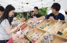 【レポート】挑戦者8名が青山のファーマーズマーケットに出店