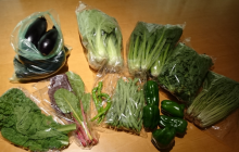 野菜セット出荷開始!