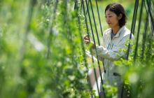 いろどり豊かな野菜を真ん中に 農業が広がる場を作りたい | 高橋 佳奈