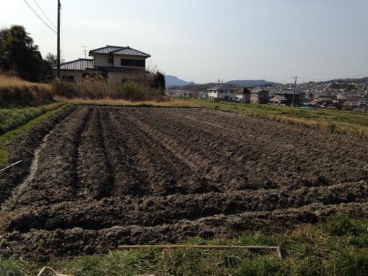 touhiguchi11-1