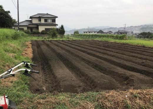touhiguchi11-2