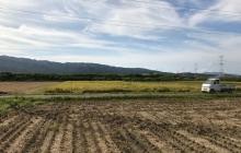 農業と多様性