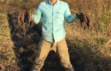 サツマイモ掘ったどー