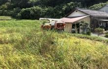 お米の収穫と、オーガニックライフスタイルEXPOでの収穫