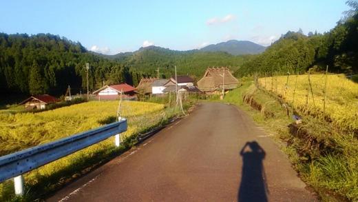 yasui_blog01