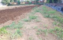 トラクターを活用して理想の農道作りに挑戦してみる!