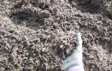 鎌倉市内循環型堆肥の完熟結果と、青春を感じた栽培ベンチのサビ落とし
