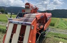 稲刈り時期、落水から農業の恐ろしさと面白さを知る。
