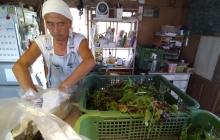 師匠である 有機農家 大渡清民氏(Hello Farm Organics)から学ぶこと「経営編」~作った野菜を全てさばく!販売のアイディアや販路について~