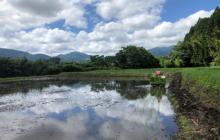 AKASAKA farmの田植え