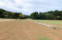 未来への準備!あんばい農園の土作りとその思想!