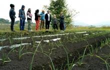|九州勉強会|宮崎・川越俊作さんに学ぶ「自然栽培」の土作り