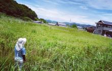 中山間地、限界集落で農業する意義とは?